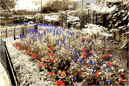 RGB flower bed