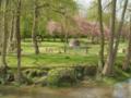 le jardin de prunus sur une rivière