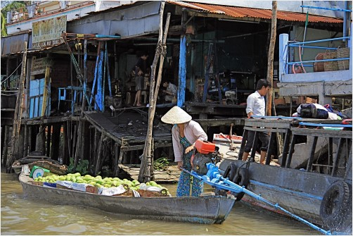 Life on the Mekong River at Can Tho